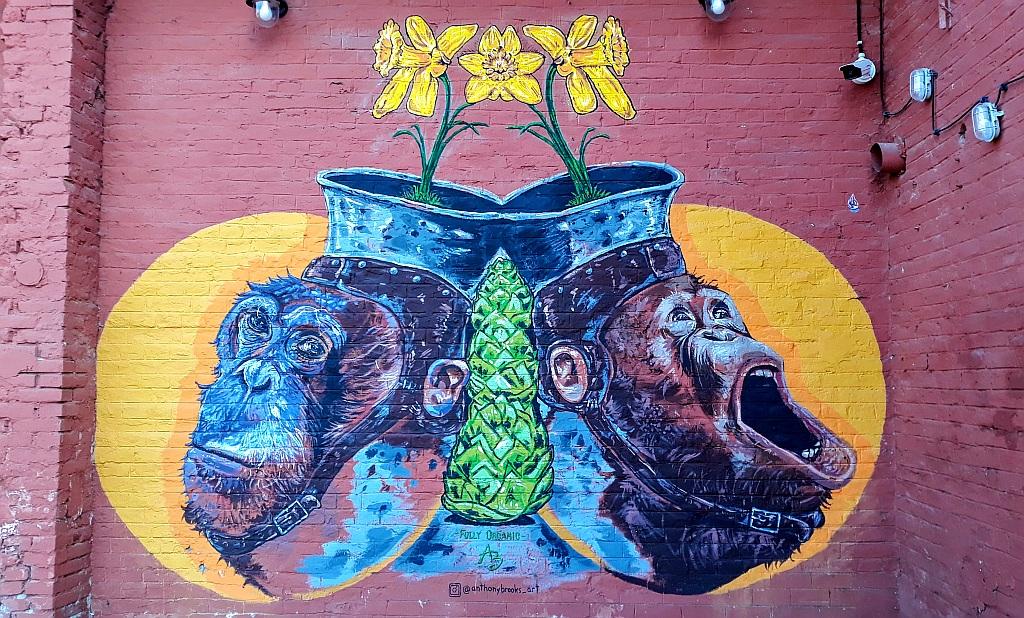 Grafit, Čukarica: Roots.