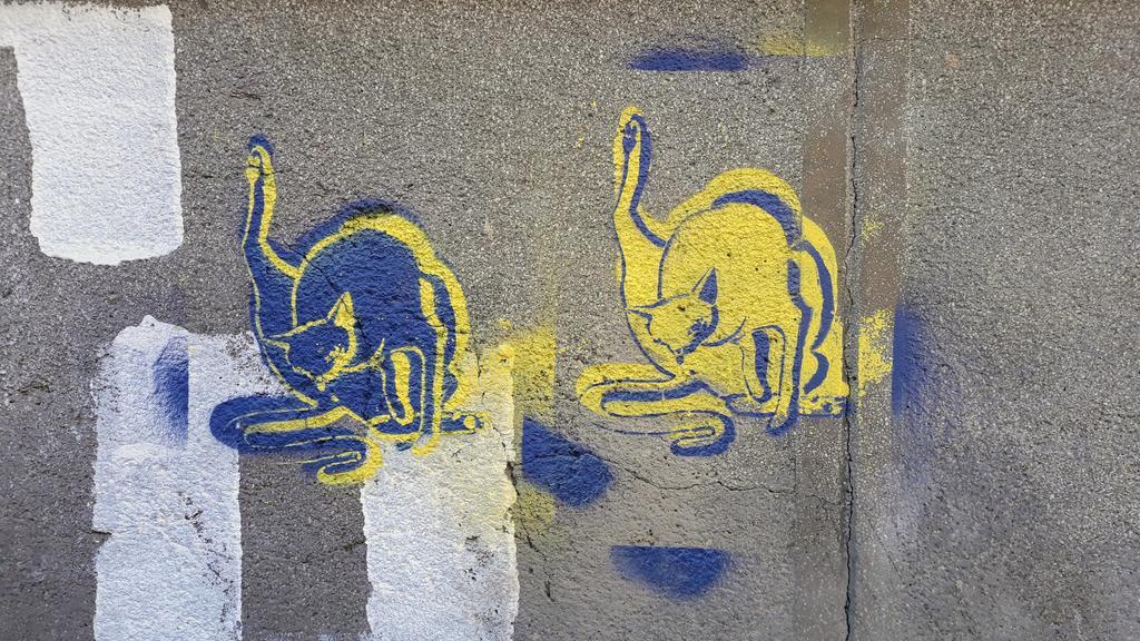 Stencil, Belgrade: What was that?!. Vračar.