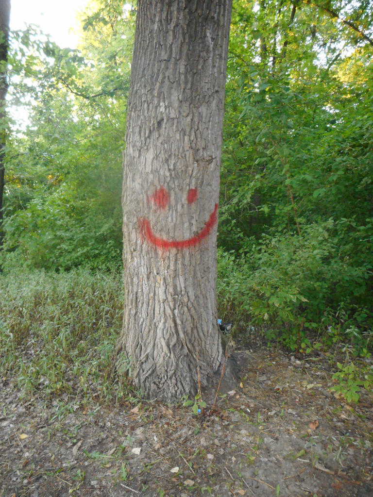 NLO, Ivanovo: Drveni smajli. grafit graffiti street art beograd belgrade stencil marker paste ulična umetnost sprej.