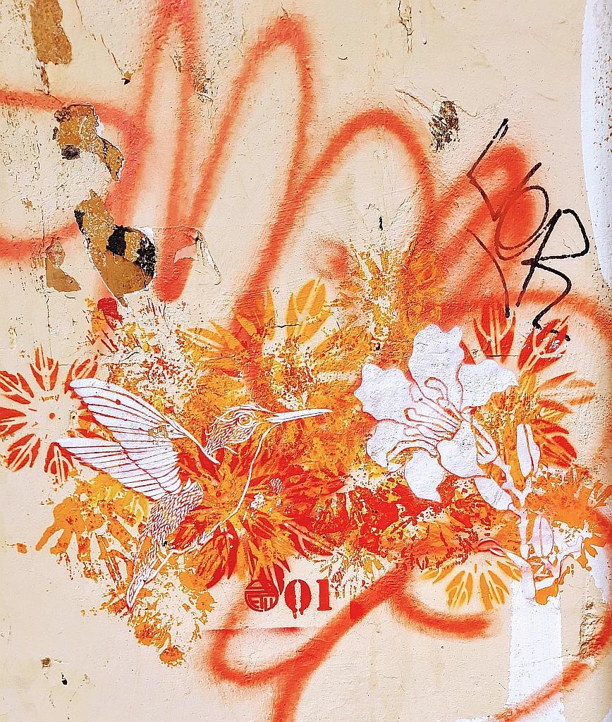 Stencil, Prenestino: kolibri .