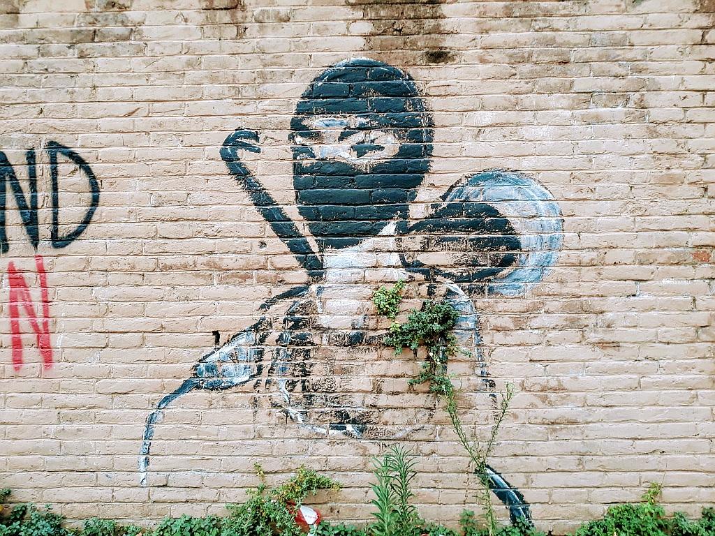 Grafit, Trevi: ninja.