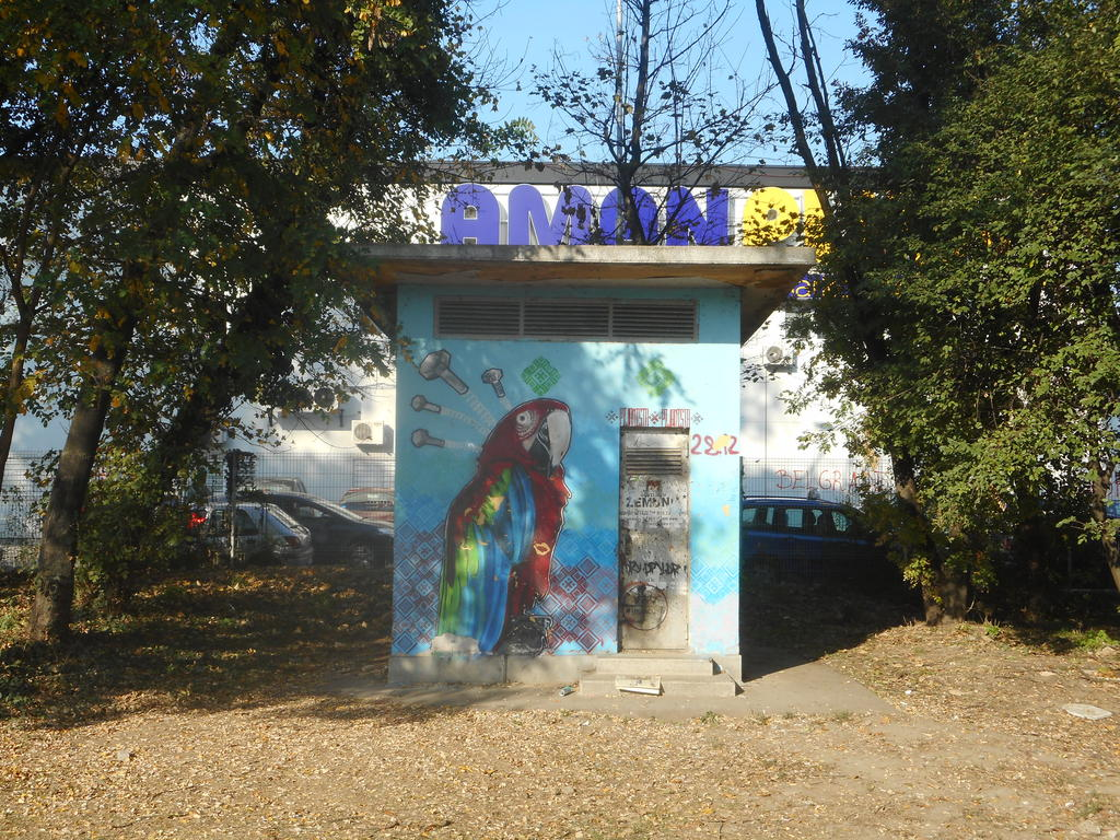 NLO, Tošin Bunar: Papagaj. grafit graffiti street art beograd belgrade stencil marker paste ulična umetnost sprej.