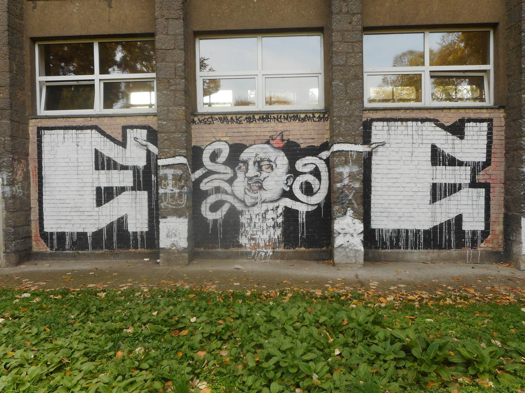 Grafit, Tošin Bunar: EE mozak. grafit graffiti street art beograd belgrade stencil marker paste ulična umetnost sprej.