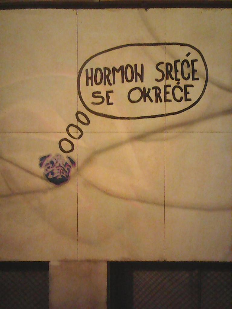 Marker, Stari Grad: Happiness hormone. grafit street art beograd belgrade. Inspektor Yoda Zgužvani.