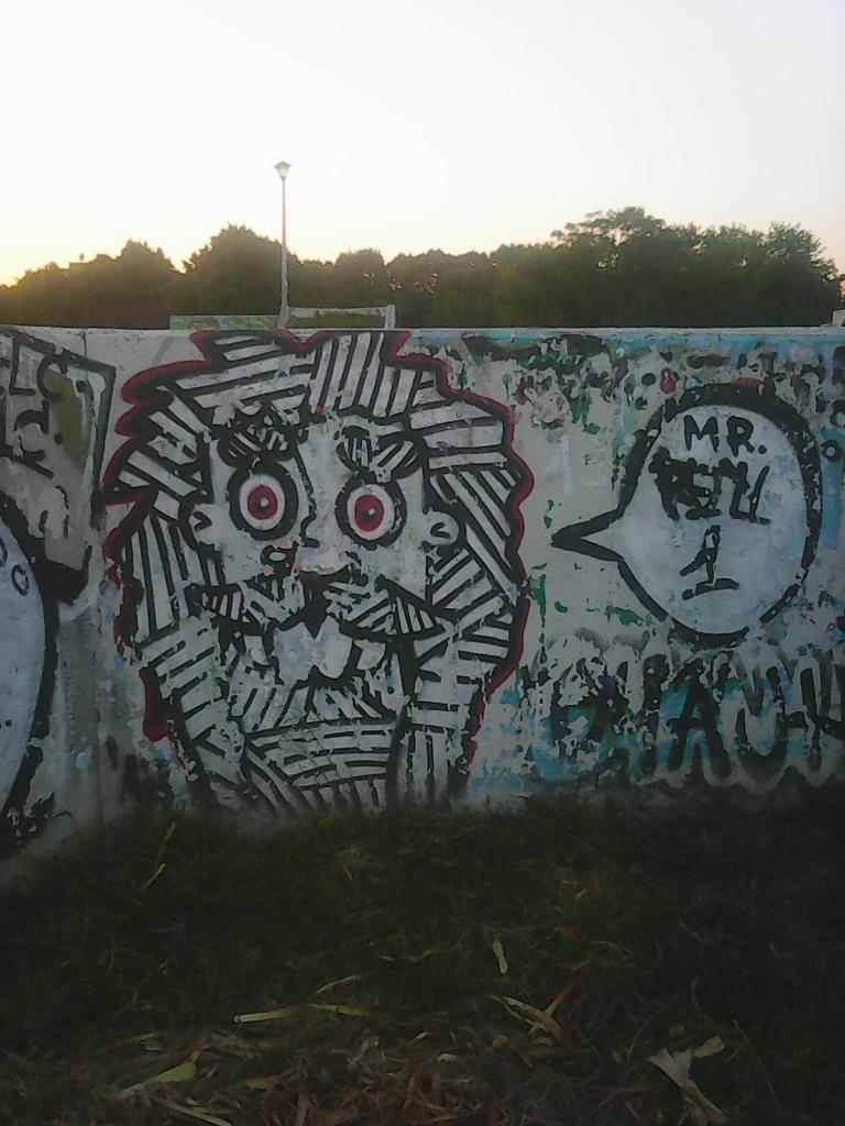Grafit, Bežanija: Lion. grafit street art beograd belgrade.