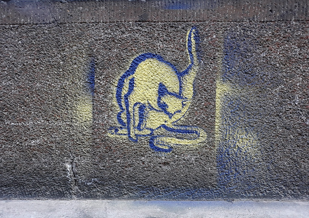 Stencil, Dorćol: Cat business. stencil. Belgrade.