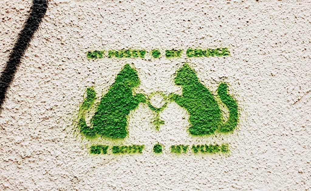 Stencil, Dorćol: My choice.